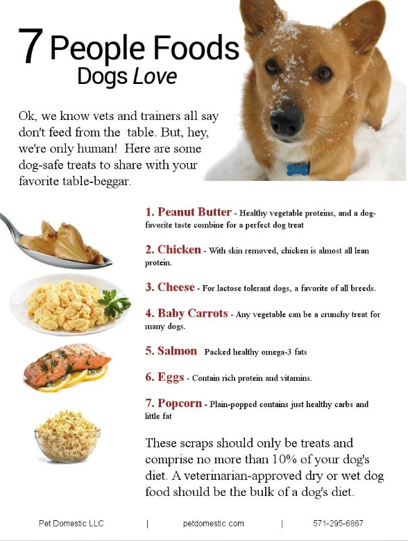 Is It Ok To Give Dogs Human Food